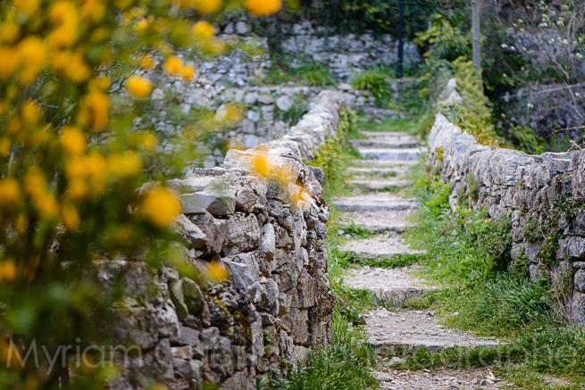 Chemin en escalier, Nvacelles, 4 Avril 2015