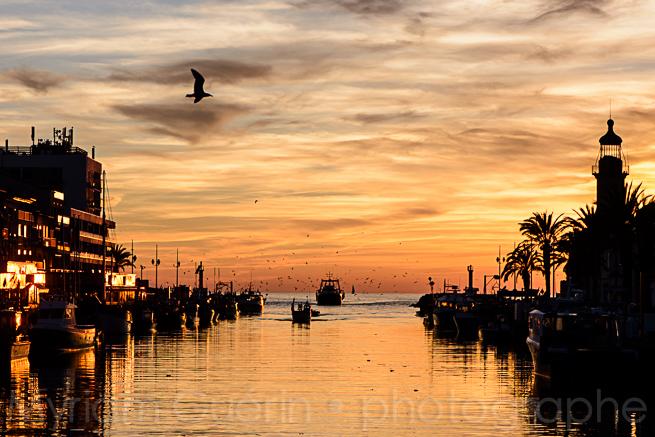 Port, Le grau du Roi, 10 Novembre 2015